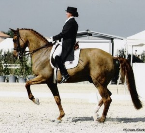 Alison Sader Larson riding dressage